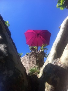The traditional umbrella up a tree did its stuff under blue skies and blazing sunshine